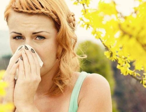 Amestecurile din plante au efecte bune in cazul alergiilor