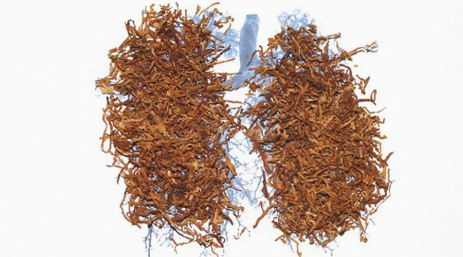 Tratament comun pentru tutun - Linguee Apps