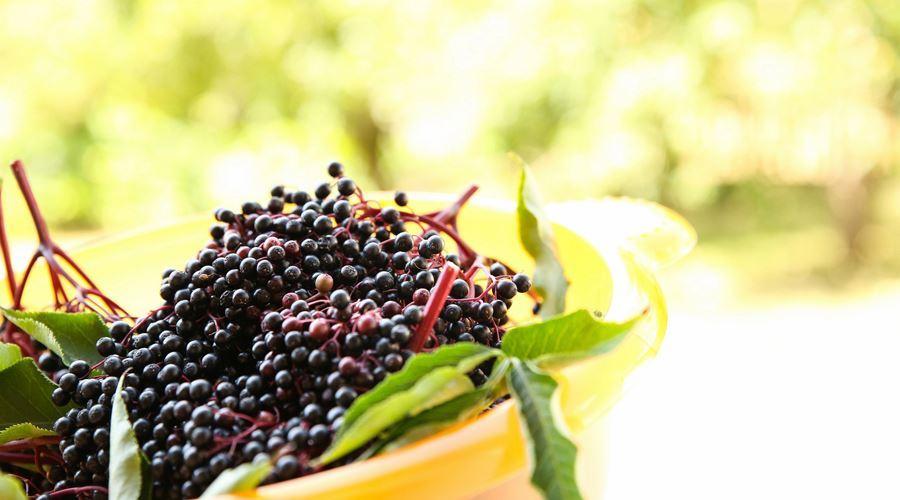 Dieta de 7 zile cu fructe si legume. Slabesti enorm! - mymamaluvs.com